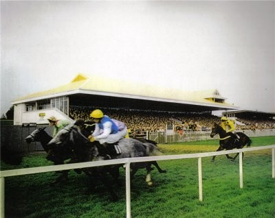Listowel Racecourse New Stand, Co. Kerry